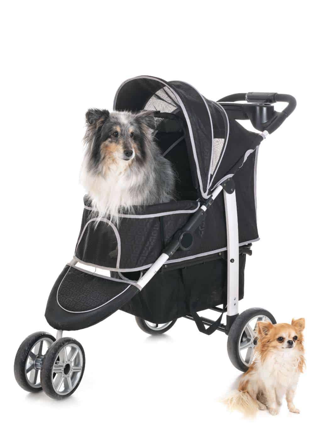 Best Dog pushchair